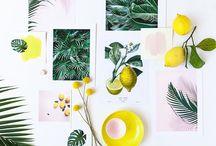 Flatlays / Flatlays mit Stationary, Fashion, Lebensmitteln, Blumen, usw. und wie man sie macht.