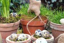 Hühner DIY / Osterdekoration, Hühner DIY, Dekoration zu Ostern, natürliche Osterdeko, Gartendekoration im Frühling