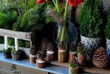 Zapfenweihnachtsbaum DIY
