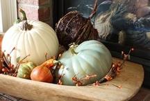 Fall / by Katie McGlauchlin