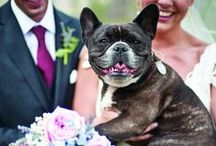 The Bridal Party / Ring bearers, flower girls, cute pups and more!