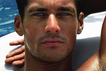 David Gandy / Absolutely perfect!