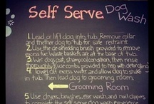 Self Serve Dog Wash! / All four of our locations feature our easy to use fully equipped self service dog wash. All that's missing is your dirty dog, and after you've finished... WE clean up the MESS!