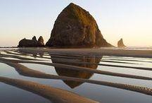 Go Oregon / travel planning board.  / by Michelle Hernandez