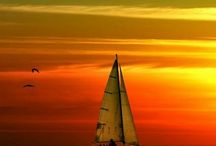 A sailing we will go / by Patti Larranaga