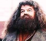 ◬ rubeus hagrid / Professor Rubeus Hagrid (b. 6 December, 1928) was a half-giant wizard, son of Mr Hagrid and the giantess Fridwulfa, and elder half-brother of the giant Grawp.  Hagrid attended Hogwarts from 1940, he was in Gryffindor. In his third year, he was framed by Tom Riddle for opening the Chamber of Secrets and using his pet Acromantula to attack several Muggle-born students. Later he was trained as gamekeeper of Hogwarts and allowed to live on the school grounds at the request of Albus Dumbledore.