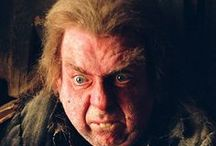 """◬ peter pettigrew / Peter Pettigrew, O.M. (First Class), (c. 1960 – March, 1998), also known by his nickname """"Wormtail"""". During the First Wizarding War, he was a member of the Order of the Phoenix, but became a spy when he defected to Lord Voldemort. He  betrayed James, Lily and their son Harry to Lord Voldemort. Pettigrew played a key role in Voldemort's rebirth and continued to serve him during the Second Wizarding War."""
