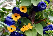 Gardening-Landscaping and Ornamentals / by inspired1