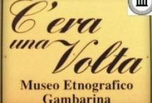 #invasionidigitali-Museo Gambarina / by Tiziana Bergantin