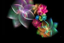 Fractal Art / Different expression / by Terri Dumensil