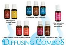 The Essentials  / Young Living Essential Oils  / by Miranda Bensch