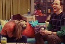The Big Bang Theory (Season Two)