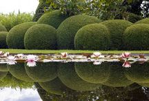 *Gardens* / Fabulous gardens!