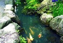 Gentle Sensing ... / A pool of pure white liquid light .................