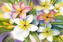 Flowers * Frangipani