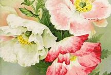 Flowers * Poppy