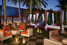 Sunscape Resorts & Spas / Sunscape Resorts & Spas offer lively Unlimited-Fun® experiences in the most sought-out destinations.