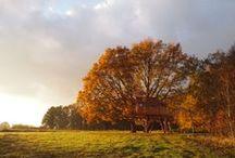 Les 4 saisons | La cabane du Perche / Les quatre saisons à la cabane du perche, cabane chambre d'hôtes dans les arbres, en Normandie