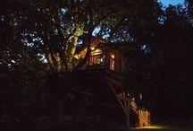 Nightfall | La cabane du Perche