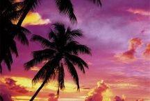 Tahiti / Tahiti の人々には植物が思っくそ付いている。