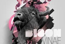 Graphic Design / Graphic Design Inspiration. / by Amanda Virginia Dalstra