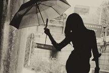 Umbrellas ✿⊱╮
