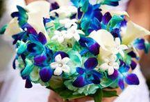 Wedding Ideas / by Savannah Plenar