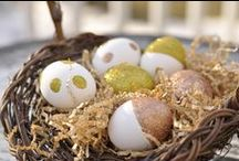 Easter eggs / by Fresh | food.home.style