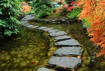 Path to Adventure / by Kay Parker