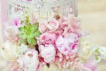 ▲ ROMANTIQUE ▲ / Des tons pastels, de la douceur, de jolies matières pour une ambiance romantique.