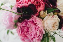 K_flower
