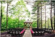 Dream Wedding / by Alicia Griswold