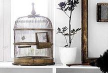 Desing | Birdcages / Decoración con jaulas antiguas / Birdcages