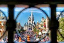 Disney / by Jordyn Suchman