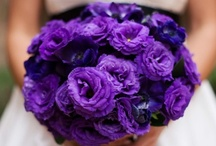 Bridal Bouquets / beautiful bridal bouquets...
