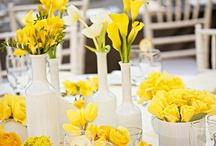 Wedding Decorations and Centerpieces / Wedding decorations and centerpieces...