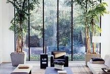 indoors x lays