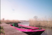 De Bietenhaven / Groepsaccommodatie in de Schermer - Oterleek