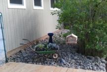 Backyard bliss / by Aubrey Sakaguchi