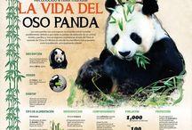 infos geniales! / infografic