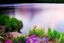 Creation / #creation #God #Jesus Christ #love # life #photography #science #nature / by Craig McCartan
