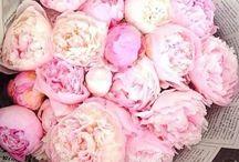 Wedding Flowers: Peonies-Love