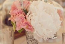 Sis Wedding / August 2014
