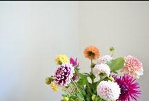 27. flower / plant / by ryoko otake