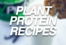 Plant Protein Recipes / Delicious recipes using VPro Raw Plant Protein!