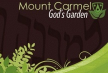"God's Garden / The geographic Mount Carmel that we take our Carmelite name from is a mountain range along the Mediterranean in Israel. It is a green oasis surrounded by desert; hence, its name ""Carmel,"" which means ""the Garden of God"" in Hebrew. The metaphorical Carmel is a way of life, our disposition as we make our spiritual path up Mount Carmel.    The images and insights presented here represent a small sampling of what has bloomed in ""God's Garden"" over the course of our 800-year existence."