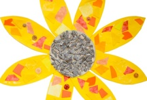 Van Gogh & Sunflowers / More art projects and ideas for Vincent Van Gogh curriculum.