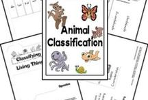 Science for Animal Lovers / Resources, ideas and activities for studying animals!