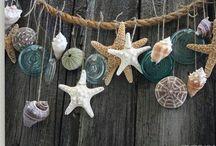 Seashell / Schelpen / Driftwood / Sea Shell driftwood schelpen en drifthout