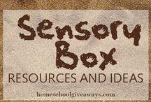 Sensory Activities and Bins